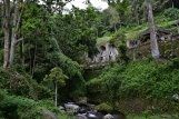 Gunung Kawi, entre la selva