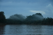Riu Kinabatangan a les 6 del matí