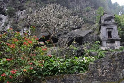 El camí que puja cap al temple és preciós