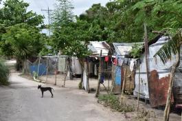 Cases i camins de l'illa