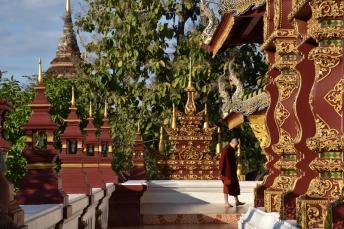 Un monjo meditant dins un temple