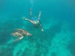 Fer snorkel i trobar-te això mola molt!