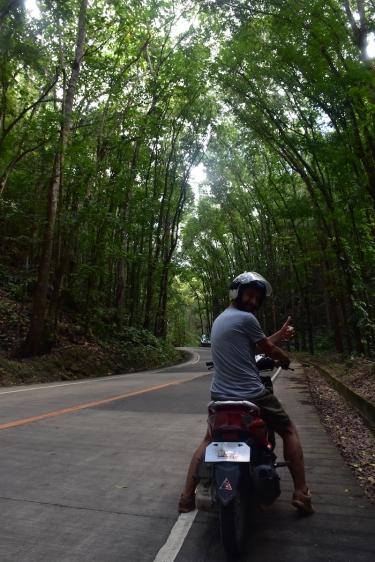 Paisatges de cine a Bohol