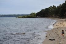 Un nen passeja per la platja