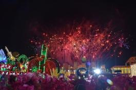 Una gran sorpresa veure el carnaval
