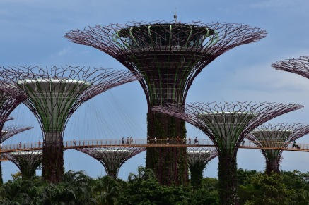 Els arbres de Gardens by the Bay