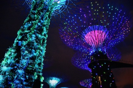 L'espectacle nocturn dels Gardens