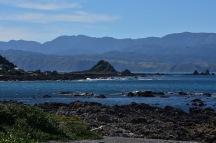 Vistes de la carretera que voreja la costa cap a Wellington