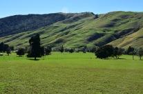 Els turons són igual de verds però més grans a l'illa sud