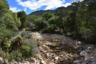 El riu que desemboca al mar a Abel Tasman