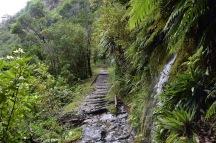 Detall del camí de Charming Creek i les antigues vies