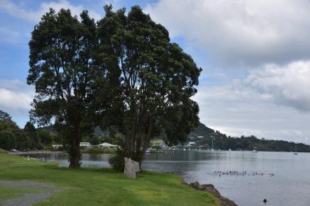 Vistes del llac a peu de la Mount Manaia Walking Track