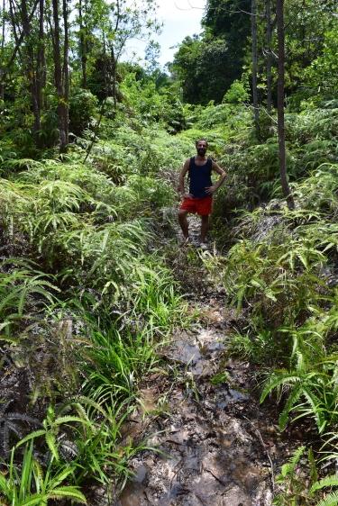 30 minuts en plan Frank de la jungla