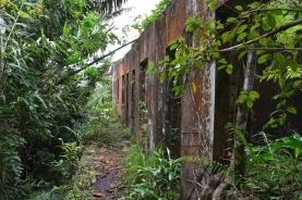 Restes del Black Palace entre la vegetació